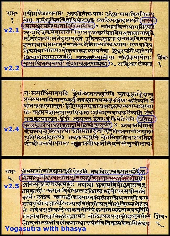 Yoga sutra translate sanskrit
