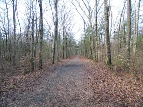 Nice long trail