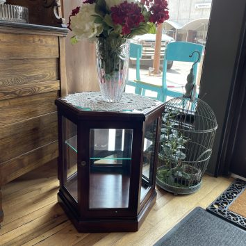 Small Display Case with Glass Shelf