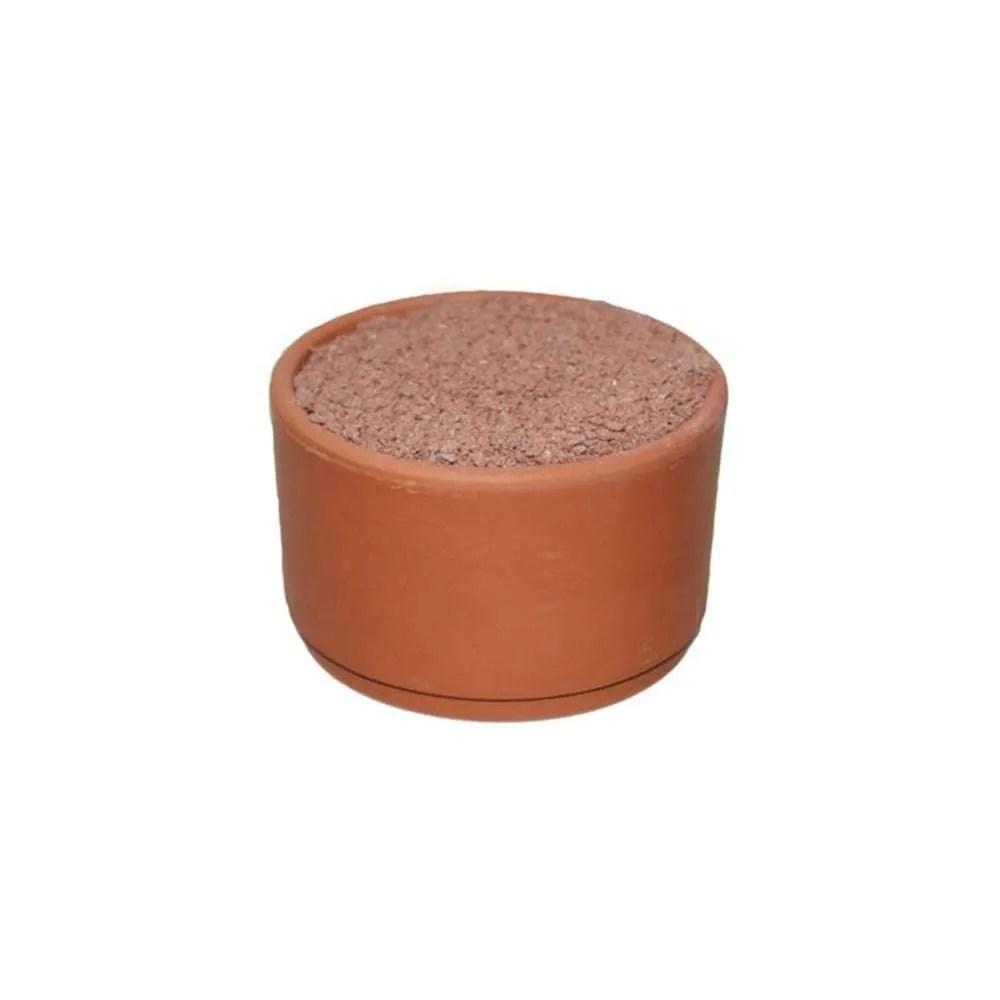 Ostrea-Redstone-Pickpot-6pk