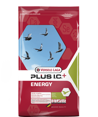 Versele-Laga-Energy-Plus-I.C