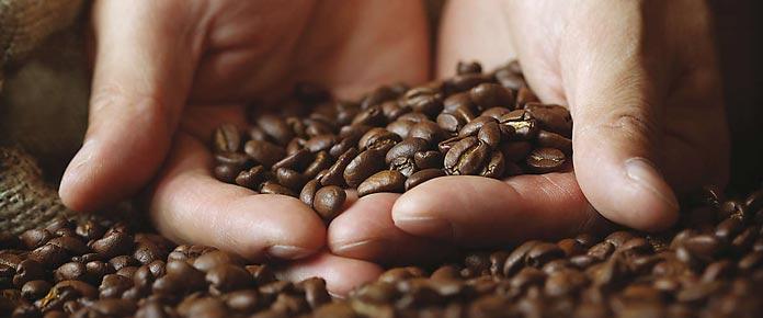 HostMilano coffee beans