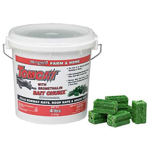 Best Rat Poison that kill rats