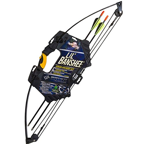 Cheap compound bows