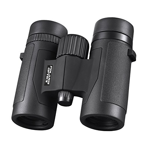 Best Lightweight Binocular review
