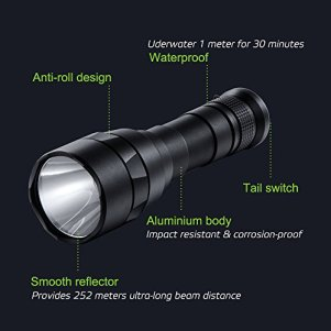 800 lumen light