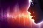 O que é um Portal de Voz?