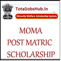 post-matric-moma-scholarship