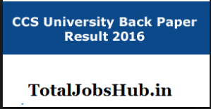ccs-university-back-paper-result