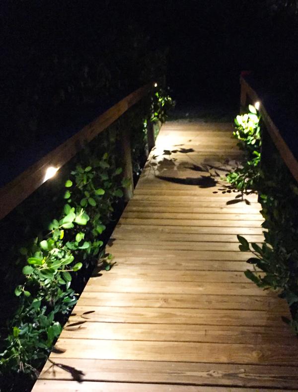 landscape lighting installations