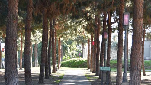 LA art park