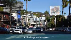 LA Tourist Attractions