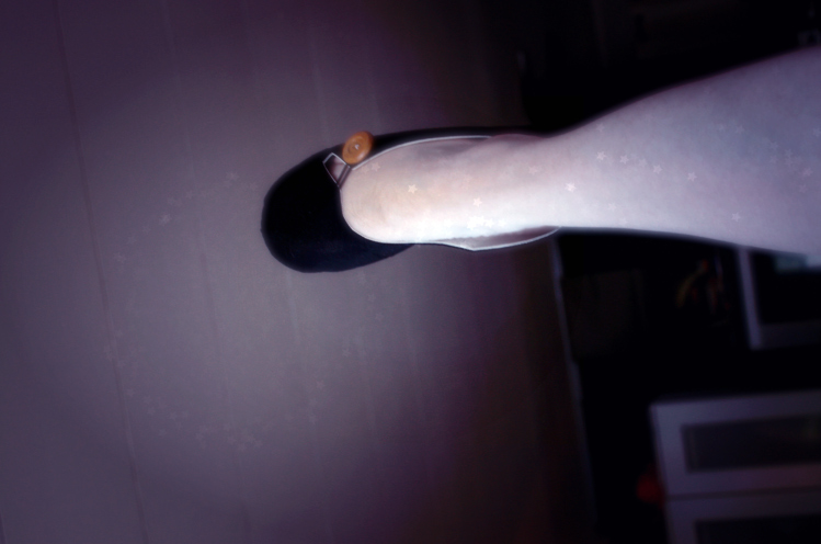 My Right Foot…