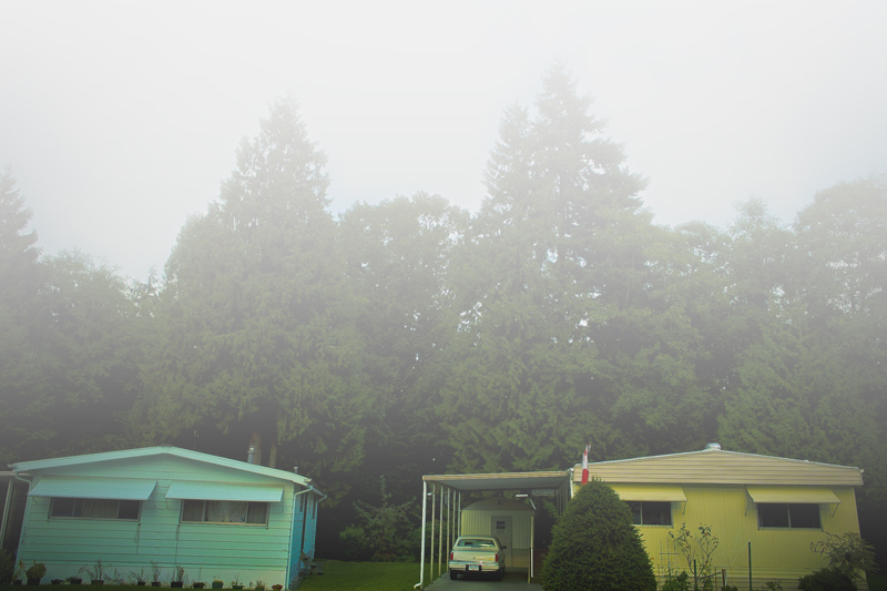 Foggy Gray