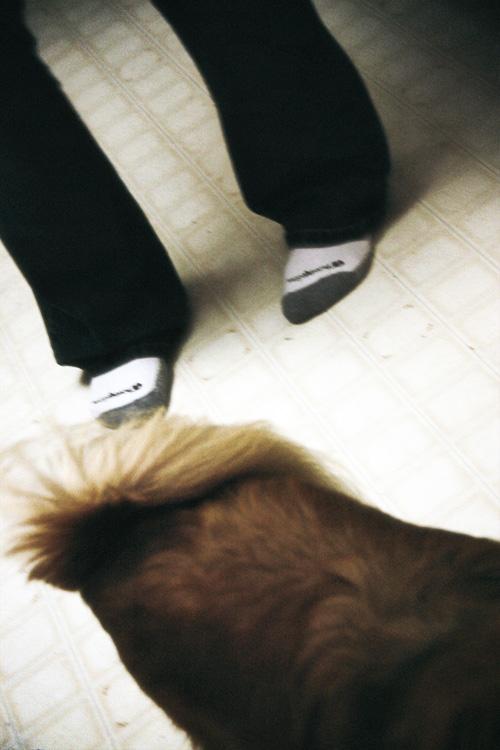Puppy Dog Tale