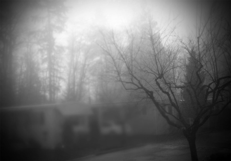 foggy morn…