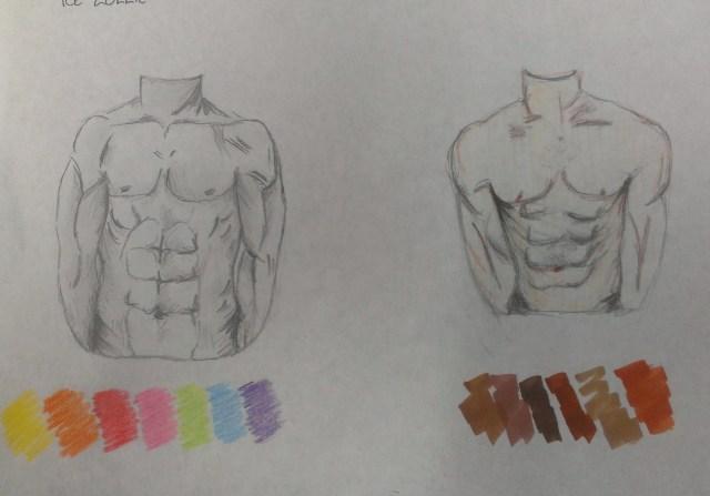 torso_fist sketches
