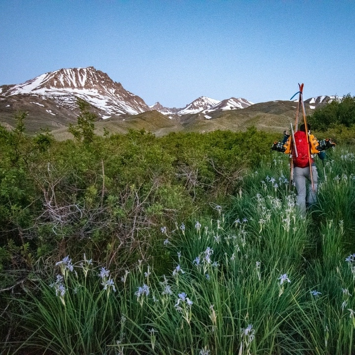 Chris wades through a sea of irises toward The Thumb. I had warned him we might have to hike 2,000ft before we hit the snow line, but in the end we hiked nearly 5,000ft!