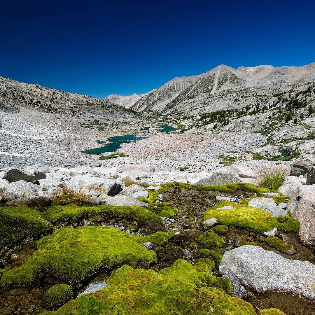 Upper Dusy Basin.