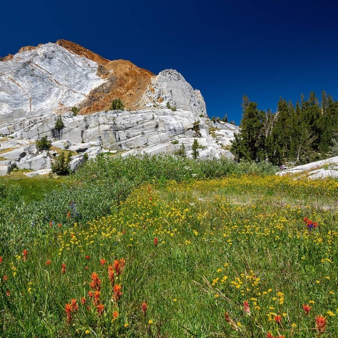 Spring comes late to the high Sierra.