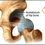 somatic muscle flex