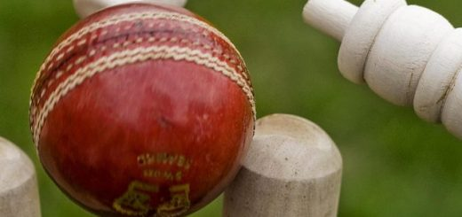 Cricket Stock Photo