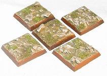 R00FB202 - 25mm square (muddy)