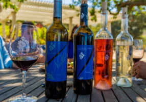 sciandri-wine