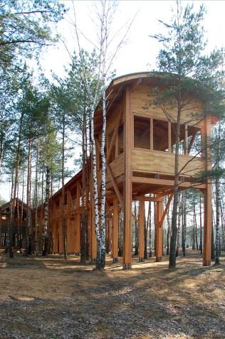 Мы привыкли сохранять деревья, встраивая здания между ними и добиваясь при этом лучших видов.