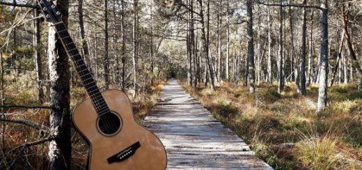 catalin stepa-chitara-muzica-speciala-folk