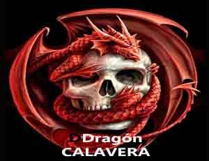 Significado De La Calavera Archives Totemanimal