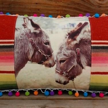 2 Donkey w/ Vintage Serape