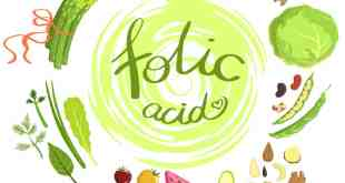 the importance of folic acid
