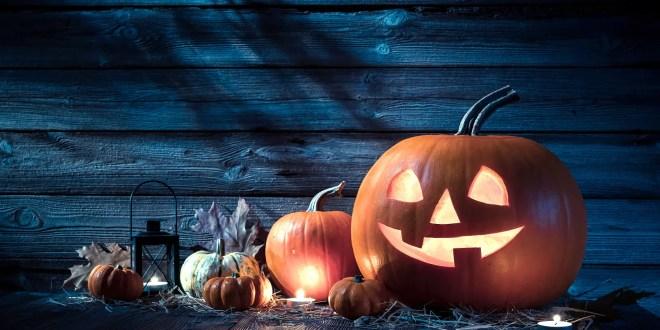 Wholesale Inventory Network Reveals Halloween Adventures in Salem