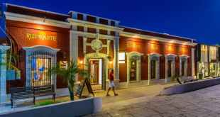 ART Walks in San Jose del Cabo Begin November 1st (1)