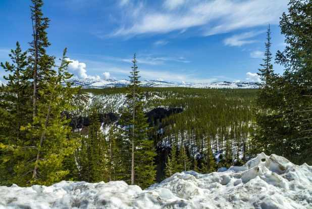 A Winter Trip to Yellowstone National Park 2