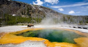 A Winter Trip to Yellowstone National Park 3