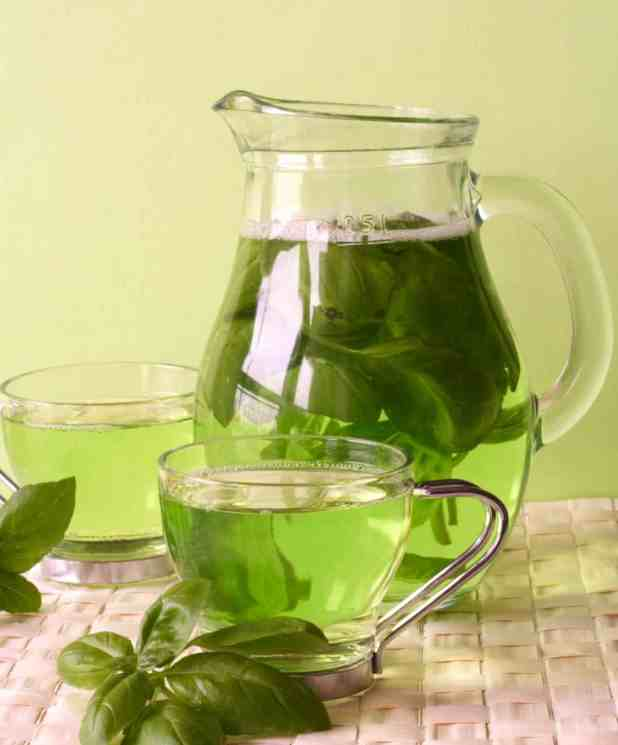 Reversing Alzheimer's Disease and Green Tea 4