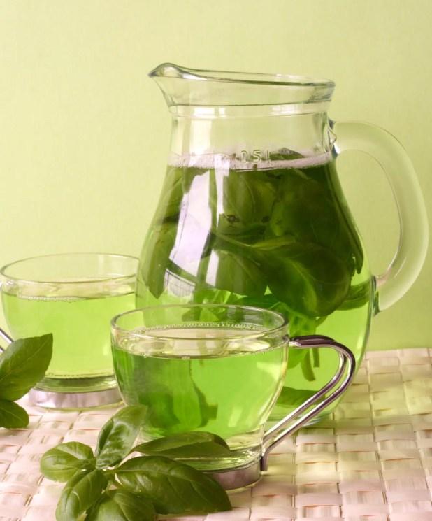 Reversing Alzheimer's Disease and Green Tea 4