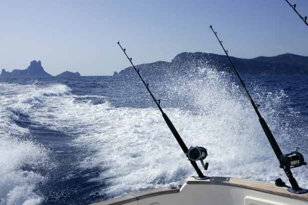 Top 5 Winter Activities in Cabo San Lucas 2