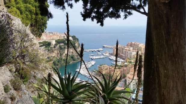 View from Monte Carlo