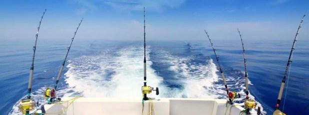fishing tournament in Cabo San Lucas by Hacienda Encantada