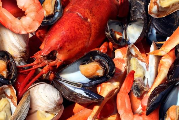 Shellfish plate of crustacean seafood