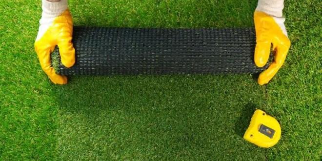 The Best Ways to Reduce Yard Work