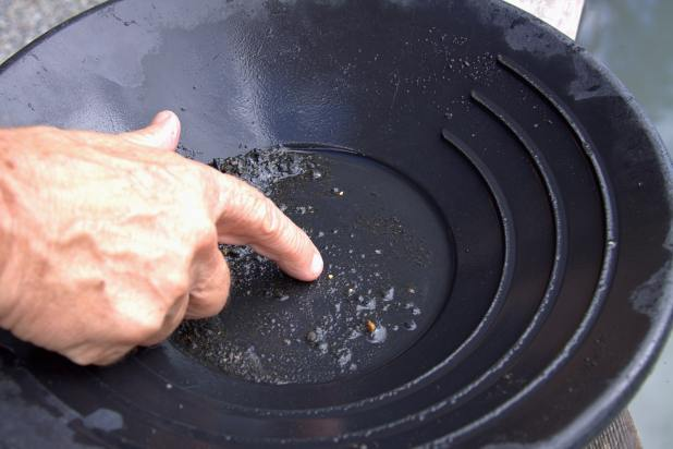 gold nugget in a gold panning tray