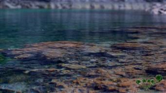 steine-im-wasser