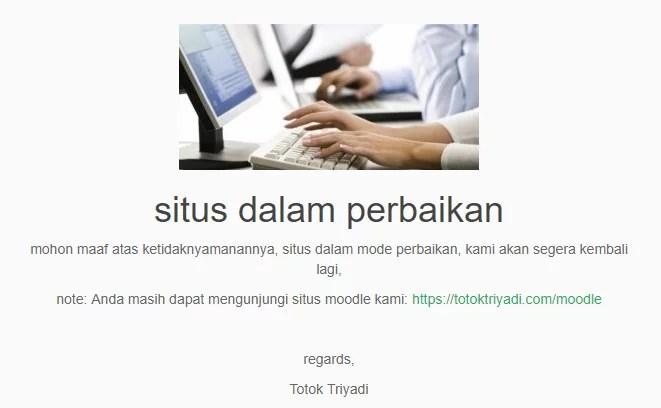 Menampilkan website dalam mode perbaikan