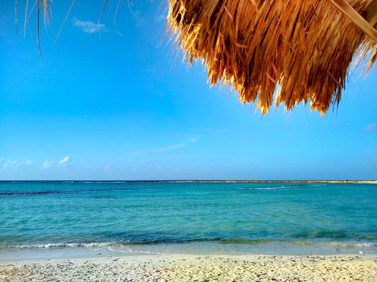 Baby Beach, Aruba for Ellen Blazer's travel blog To Travel and Bloom