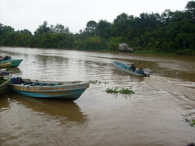 BREAKING: 'Many Dead' As Jetty Collapses In Rivers