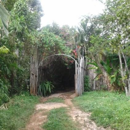 Südküste Jamaika